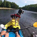 DogYak Kayak Accessories
